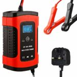Nanssigy Car Battery Charger