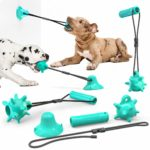 Variable Dog Chow Toy