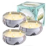 Citronella Candles Outdoors Large